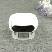 small-sized 1080p digital day night vision wireless cctv camera for baby protect