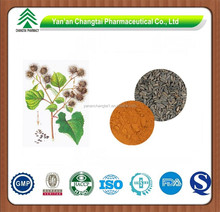 High Quality Pure Natural Burdock Root Powder Extract
