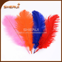 Promotion bulk natural ostrich feather for wedding and party decoration