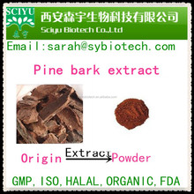 USD 18.00/kg Pine Bark Extract Proantocyanidins(OPC) 95%