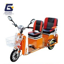 Electric Tricycle for Passenger Use(GL21)