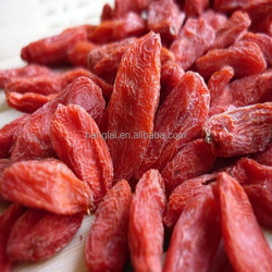 free sample goji berry goji fruit