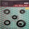 Motorcycle engine oil seal