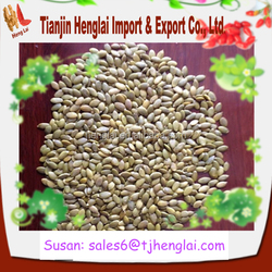 china white pumpkin seeds and good quality pumpkin kernels health food products for wholesale markets-1