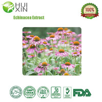 Boosting immune function Echinacea Extract HPLC/UV Polyphenol 4.0% Test by UV