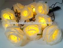 rosa blanca luz de la secuencia