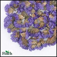 Skin Beauty Herb Flower Tea Forget Me Not Flower Herbal Tea or Dried Don't Forget Me Flower Herbal Tea