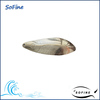SFL-44 China Manufacture Metal Trolling Spoon Lure