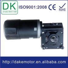 90mm 12V24V 200W 500W worm electric vehicle brushless dc motor