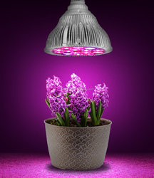 PAR38 LED Grow Light 2015 full spectrum 12W 70w Halogen LED Plant Grow Light Replacement