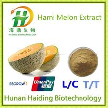 Top quality hami melon extract / Honeydew Melon extract / cantaloupe extract