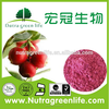 ISO Manufactory Supply Cranberry Extract Proanthocyanidins/Cranberry Fruit Powder/Cranberry powder