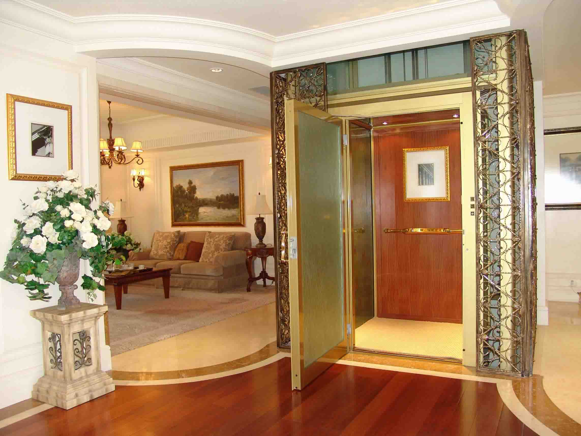 Small beautiful villa elevator from delfar for home use for Small elevators for homes