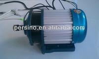 9 years alibaba supplier 60v 800w indian electric rickshaw brushless dc motor