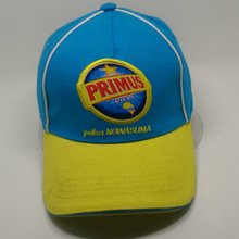 cheap embroidery and print logo basebal cap with sandwich