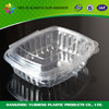 Custom hot sale new products plastic fruit container