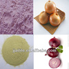 dehydrated white onion powder/onion powder making equipment