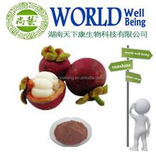 Garcinia mangostana powder extract/10%-70% Mangostin Manggis Powder Extract