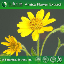 High Quality Arnica flowers Extract Powder improve life quality