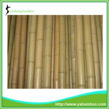 bambú esgrima polos