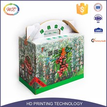 GSV Certificated 3 Ply Apples Fruit Carton Box