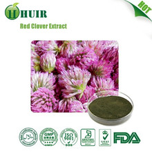 2015 hot sale free sample Red Clover Extract 20%
