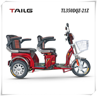 dongguan tailg cheap motorized passenger electric tricycle