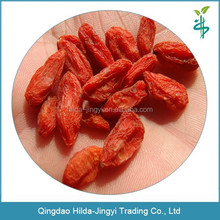 Sale bulk goji berries organic certified goji berry