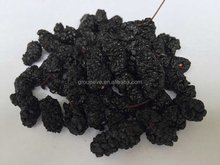 Dried Black Mulberry Supplier