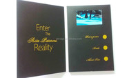sample business 4.3 inch video brochure card with USB cable