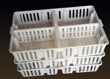 Plastic chick duck goose transport cage