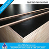 Film Faced Plywood /Formwork Board/Marine Plywood Prices