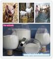 aditivo para alimentación animal fosfato dicálcico dcp fosfato de calcio dibásico 18% min grado de la alimentación proveedor