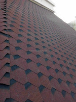 Hexagon Mosaic Tile for Roof , Kitchen Storage