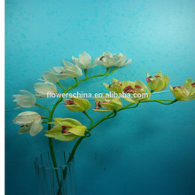 Hot selling China wholesale factory price plastic flowers for home/room/office/hotel decoration artificial orchid