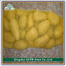 Wholesale Price Fesh Holland 7 Potatoes