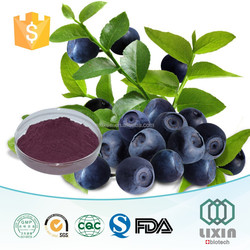 china wholesale the new product blueberry&bilberry extract,raw material in beauty products,antioxidant cranberry