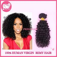Contemporary Crazy Selling curly human hair wigs for black women