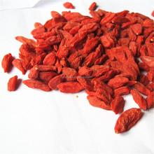 High quality ningxia dried goji berry supplier