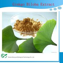 High quality ginkgo biloba leaf extract,ginkgo biloba leaf extract,ginkgo biloba leaf