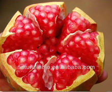 Pomegranate bark extract 40% Ellagic acid for Medicine
