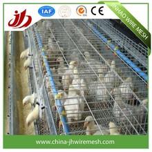 2015 anping chicken breeding cage