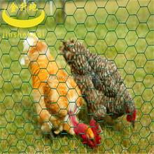 galvanized or pvc coated hexagonal wire mesh chicken netting