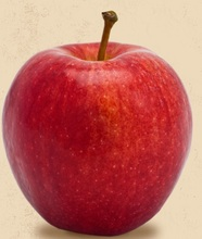 Washington Gala Apples
