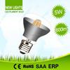 Hotel Decorative R50 R63 R80 Led Bulb Lighting 4W 6W E27