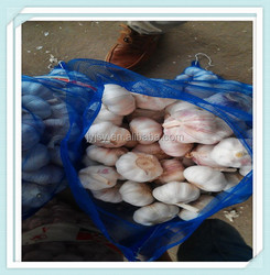 fresh for the new garlic Factory price