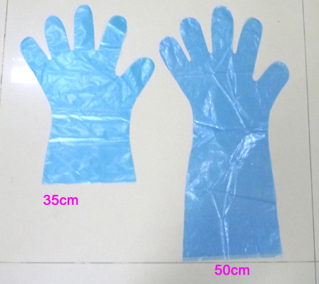 Long sleeve PE glove.png