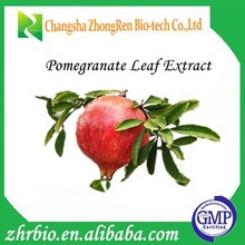 Factory supply Natural and pure Pomegranate leaf Extract Ellagic Acid 40%