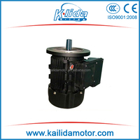 MS Series Three-phase Vertical Mount induction Motor