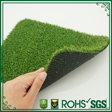 buy turf grass to garden decoration
